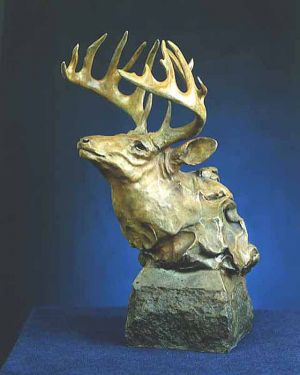 White Tail Deer Bust